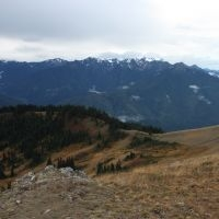 Hurricane Ridge, WA